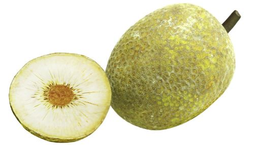 Picture of Breadfruit (Each)