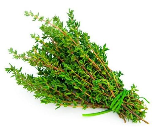 Picture of Thyme - local (1/2 Bunch)