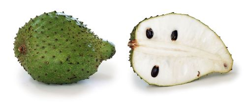 Picture of Sour Sop - Small (Each)