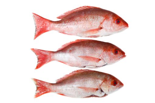 Picture of Red Snapper (local) per 1Kg