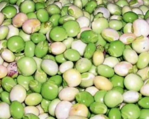 Picture of Green Gungo Peas (454 g/1 lb)